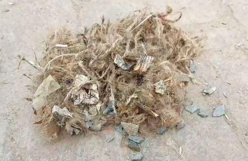 সবংয়ে তৃণমূল কর্মীর বাড়ি লক্ষ্য করে বোমাবাজি, অভিযুক্ত বিজেপি